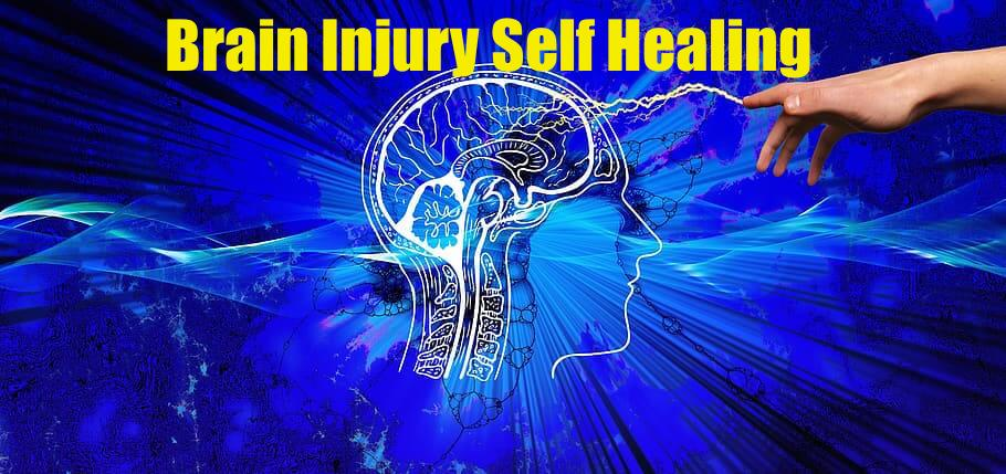 Brain Injury Self Healing Meme