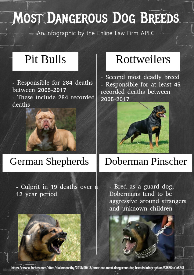 Thumbnail image for Most Dangerous Breeds List