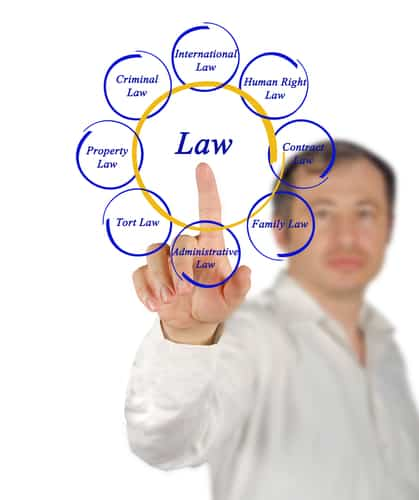 Thumbnail image for Understanding The Basics of Tort Law