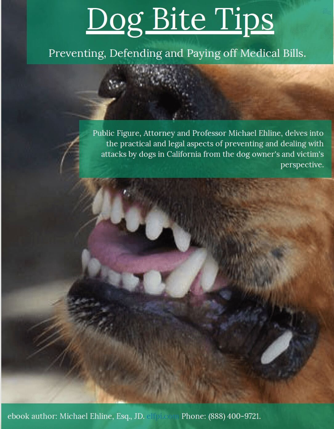 Dog bite tips, preventing, defending and fighting off dog attacks. By world famous, local Los Angeles dog bite lawyer Michael Ehline
