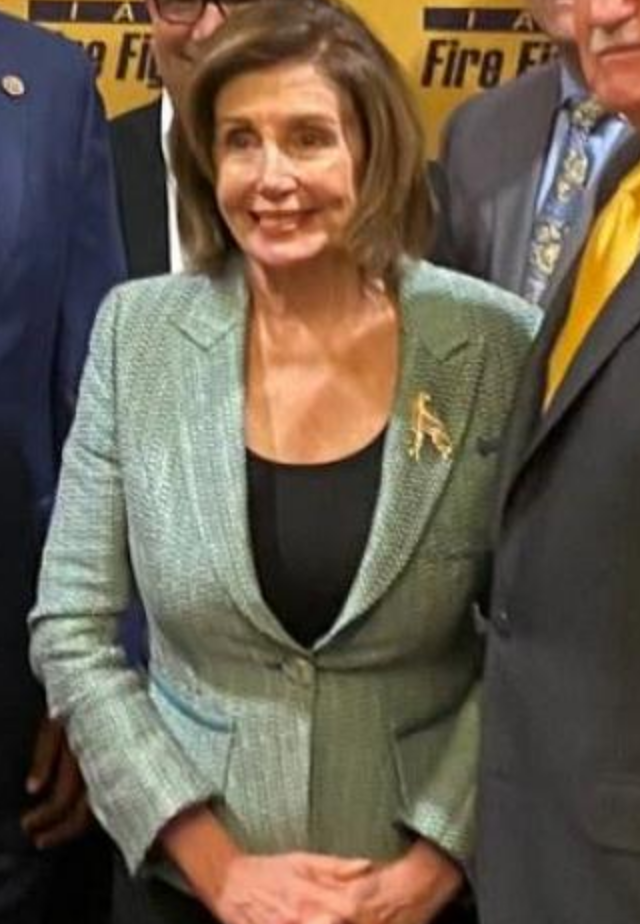 Thumbnail image for Does Pelosi's Hydroxychloroquine Hypocrisy Put COVID Recovery at Risk?