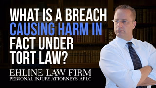 Thumbnail for Video: What Is A 'Breach Causing Harm In Fact' Under Tort Law?