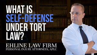Thumbnail for Video: What Is 'Self-defense' Under Tort Law?