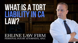 Thumbnail for Video: What Is A Tort Liability?
