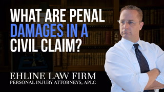 Thumbnail for Video: What Are 'Penal Damages' In A Civil Claim?