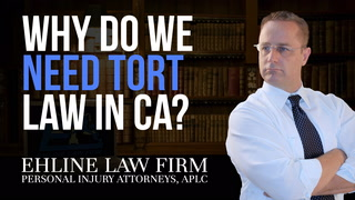 Thumbnail for Video: Why Do We Need Tort Law?