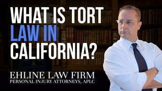 Thumbnail for Video: What is a Tort