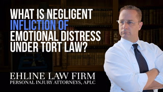 Thumbnail for Video: What Is 'Negligent Infliction Of Emotional Distress' Under Tort Law